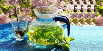 Généralités sur les remèdes anti-âges naturels